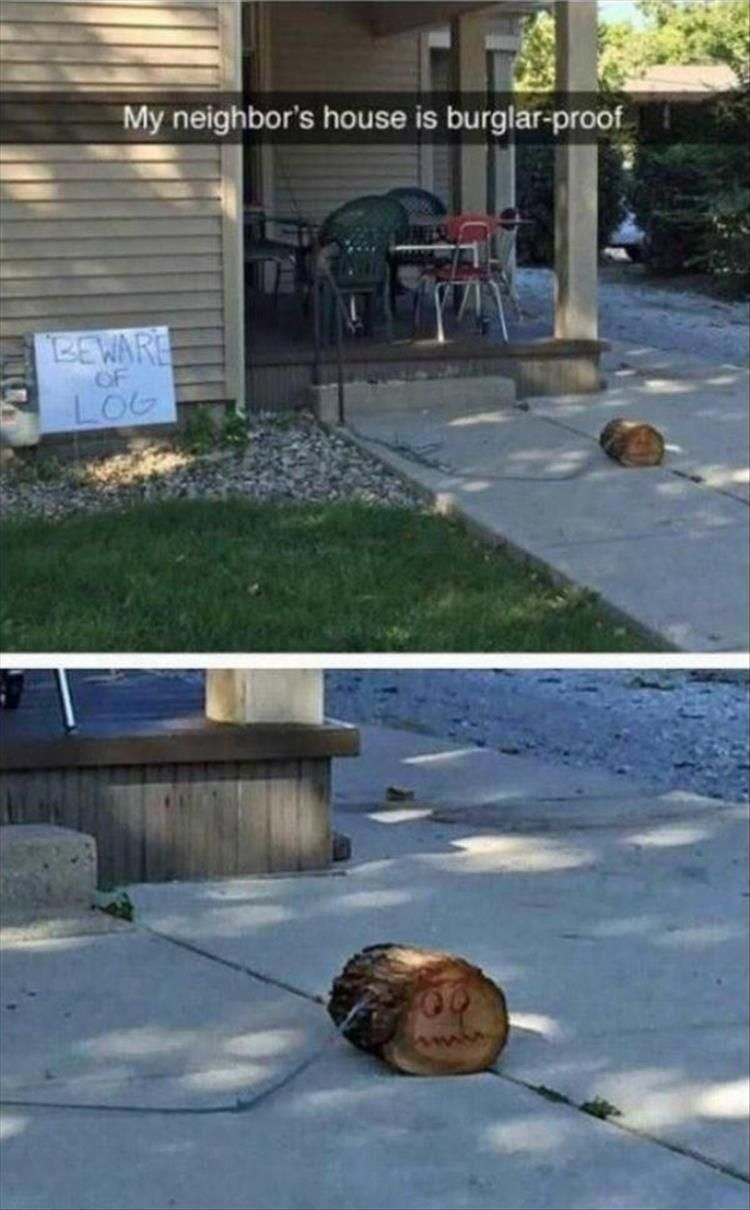 Photo of Funny Pictures Of The Day – 36 Pics – Daily LOL Pics