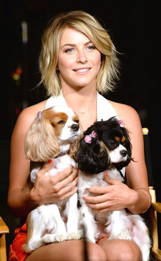 Love Her And Her Pups So Does Owen Haha Julianne Hough Photo Cute Hairstyles For Short Hair Hair Again