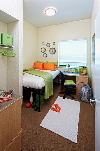 Simple Dorm Room Ideas Colleges