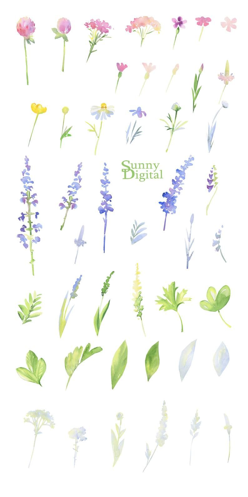 Photo of Meadow Clipart PNG Handpainted Flowers Watercolor Summer Wedding DIY Digital Wild Flower Field Plant Element Printable Herb Pastel Branch