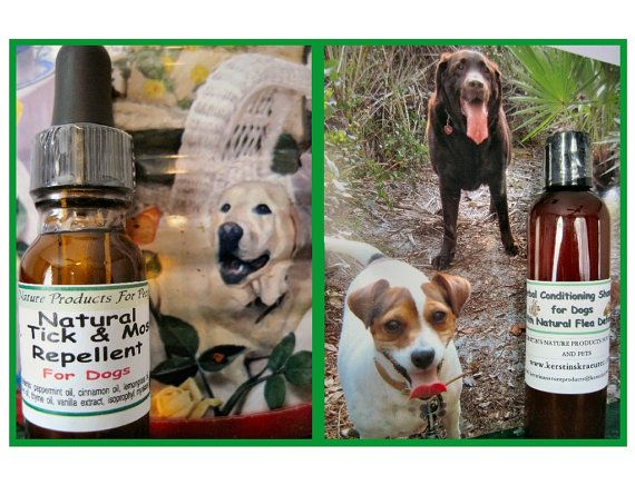 Natural Flea Tick And Mosquito Remedy For Dogs