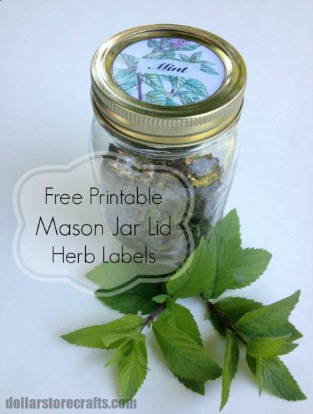 Free Printable Mason Jar Lid Labels For Herbs With Dollar General With Images Mason Jars Labels Mason Jars Labels Printables Free