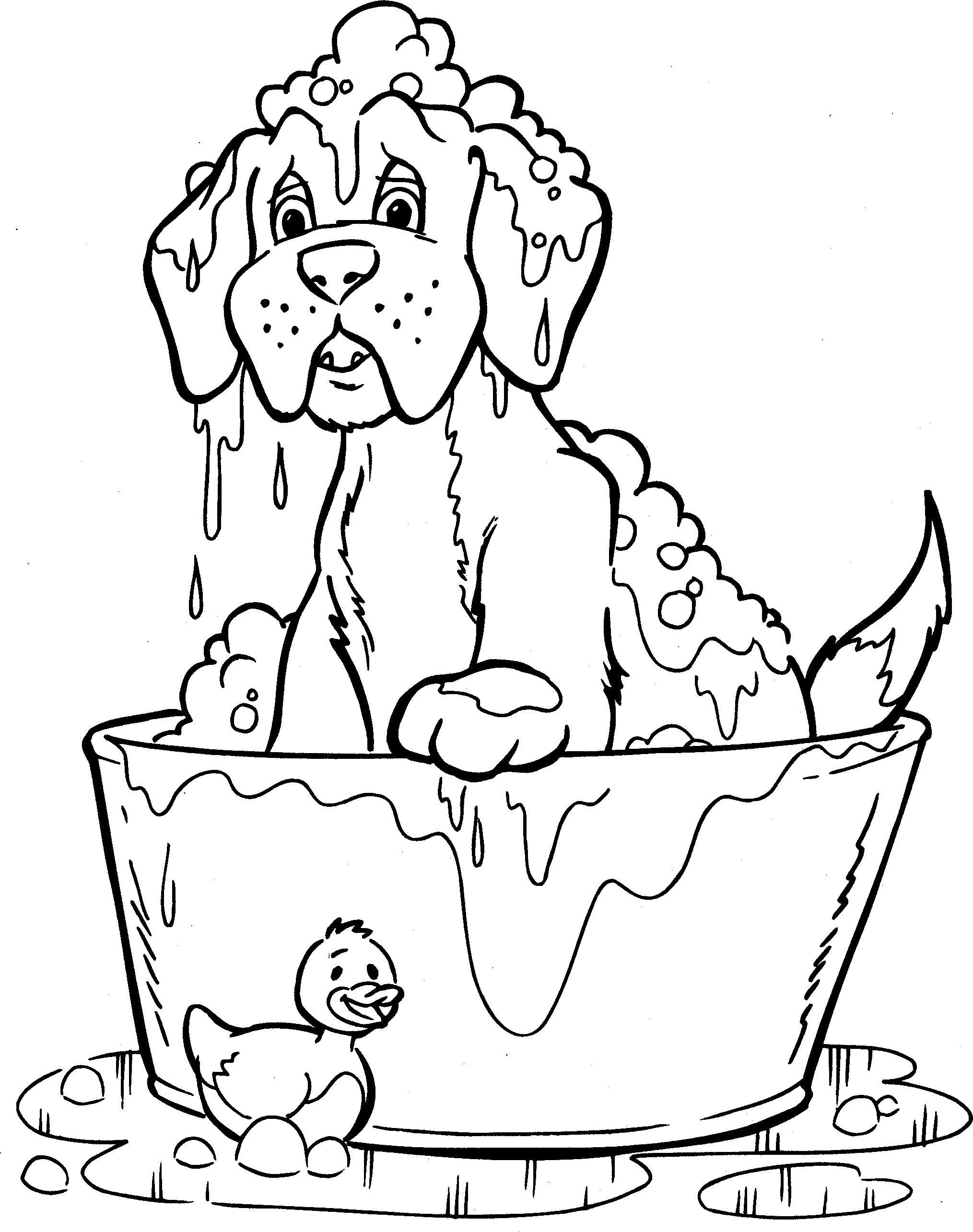Kleurplaten Honden Dieren