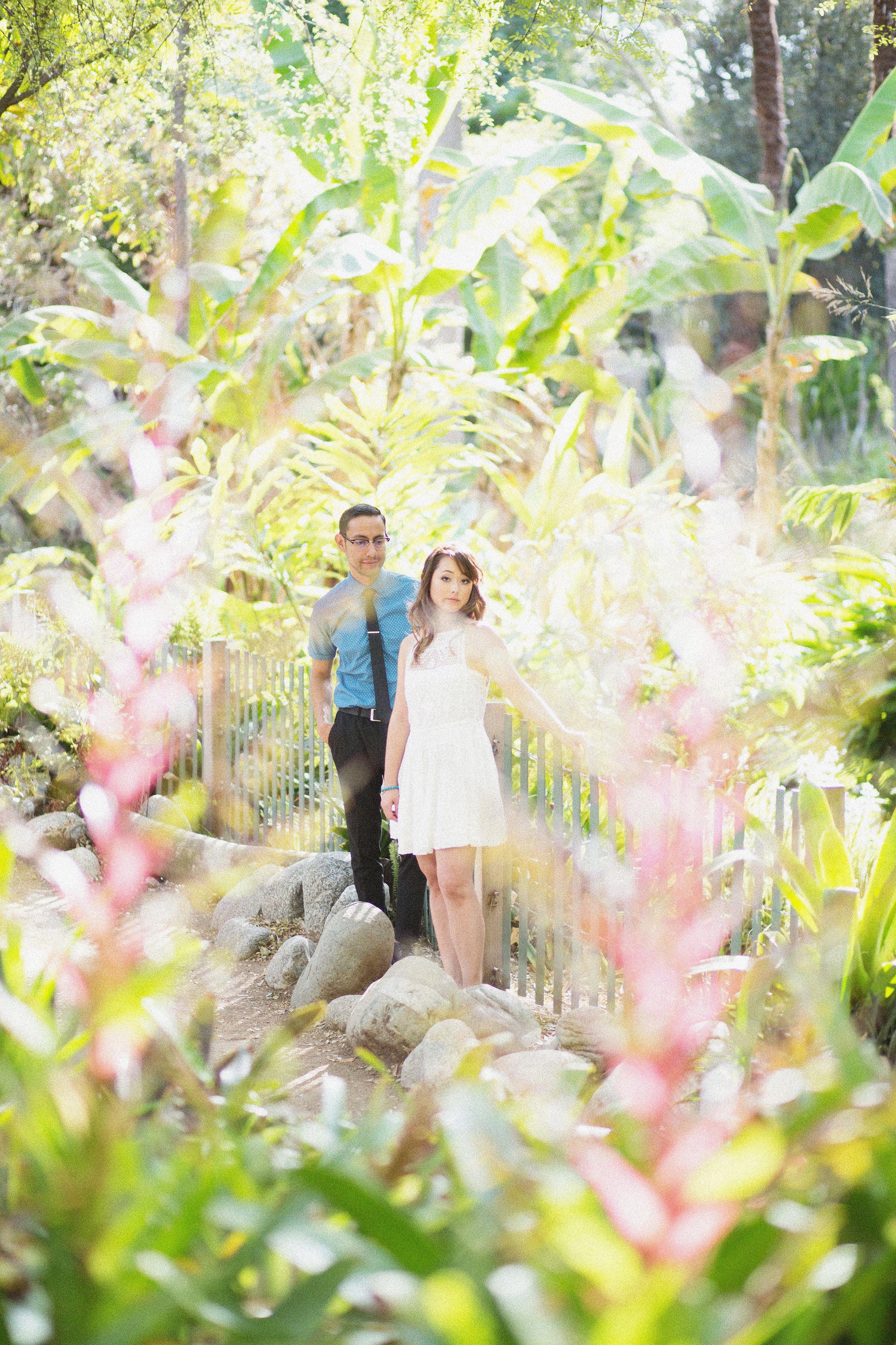 UCLA Botanical Garden, Westwood Engagement Photo Los
