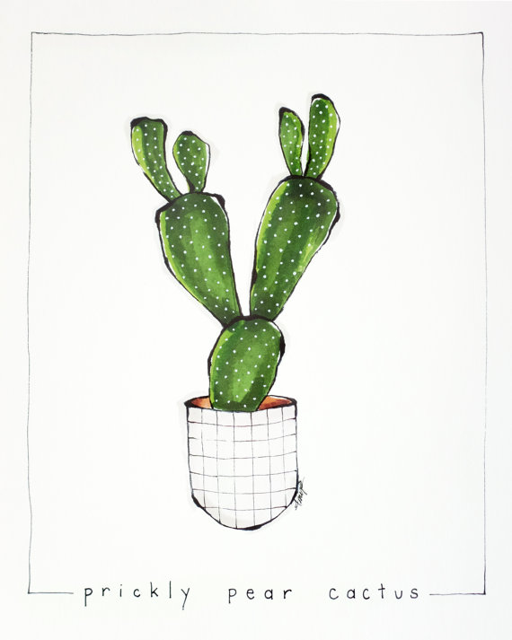 prickly pear cactus art print illustration prickly