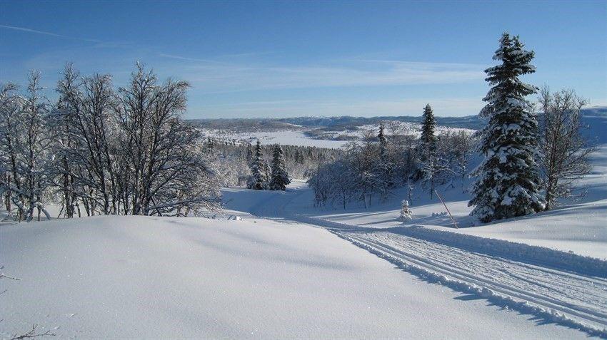 FINN – Nesbyen/Belgefet ca. 900 moh, koselig og velholdt hytte med anneks. Skiløypen går like ved hytten