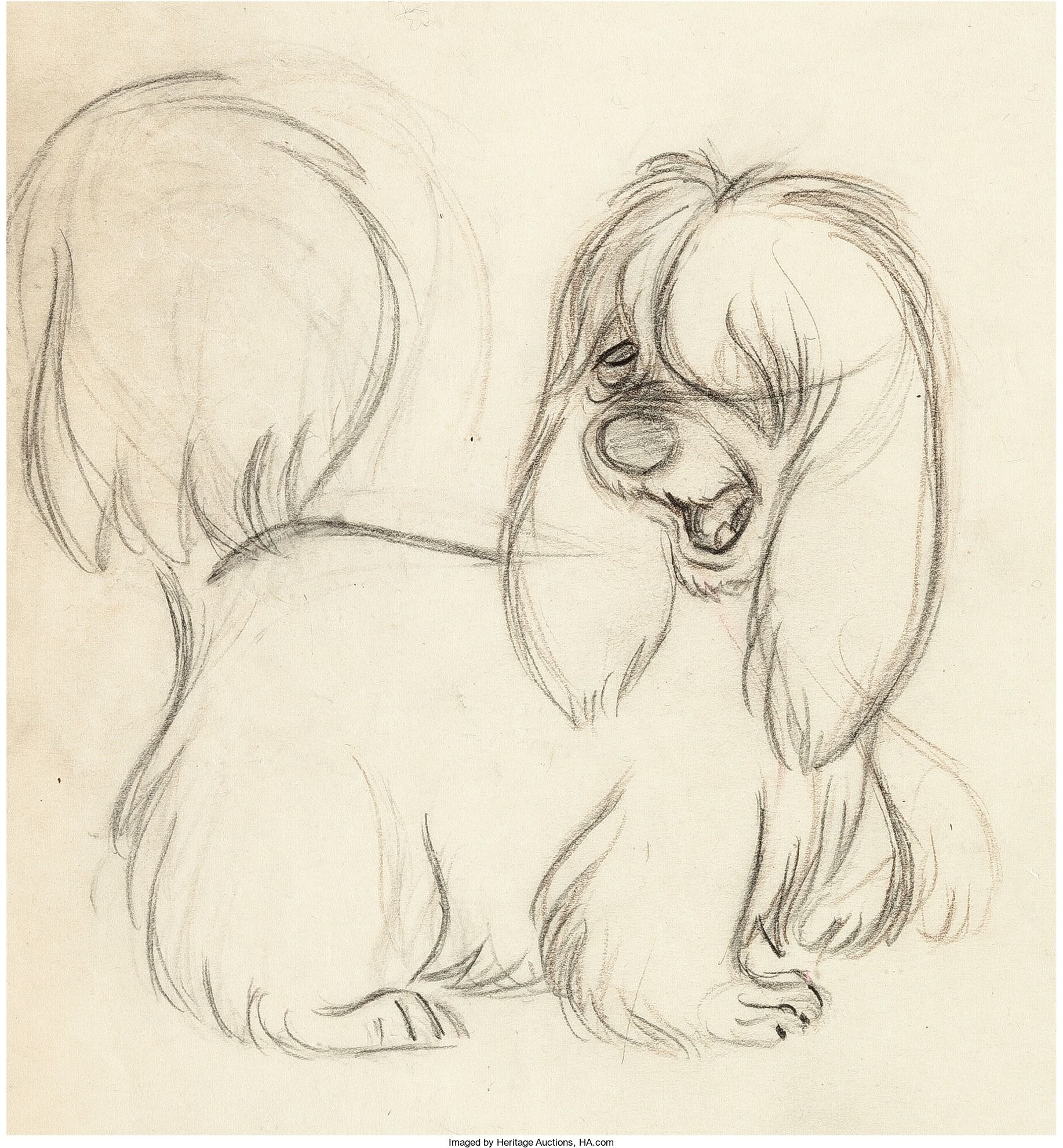 Lady And The Tramp Peg Animation Drawing Walt Disney 1955 Animated Drawings Disney Dogs Drawing Sketches