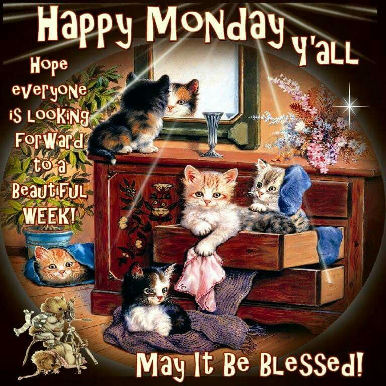 Image result for Happy Monday/New Week