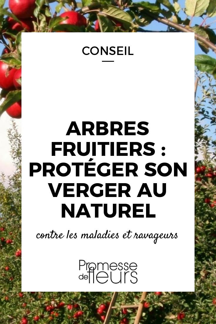 arbres fruitiers prot ger son verger au naturel. Black Bedroom Furniture Sets. Home Design Ideas