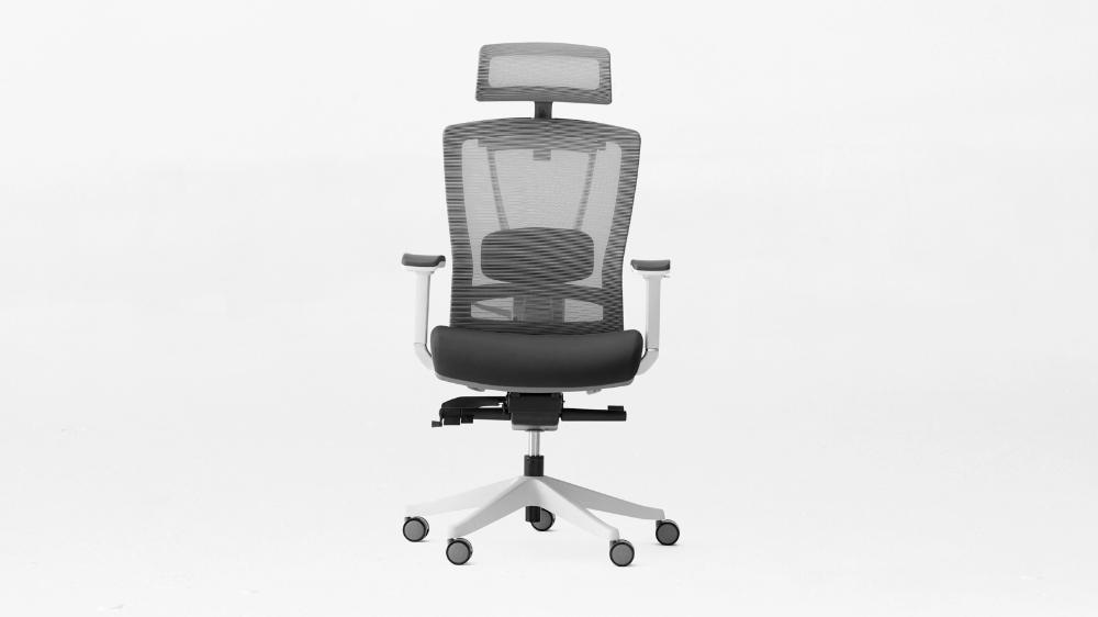 ErgoChair 2 The Ergonomic Chair Every Office Needs in
