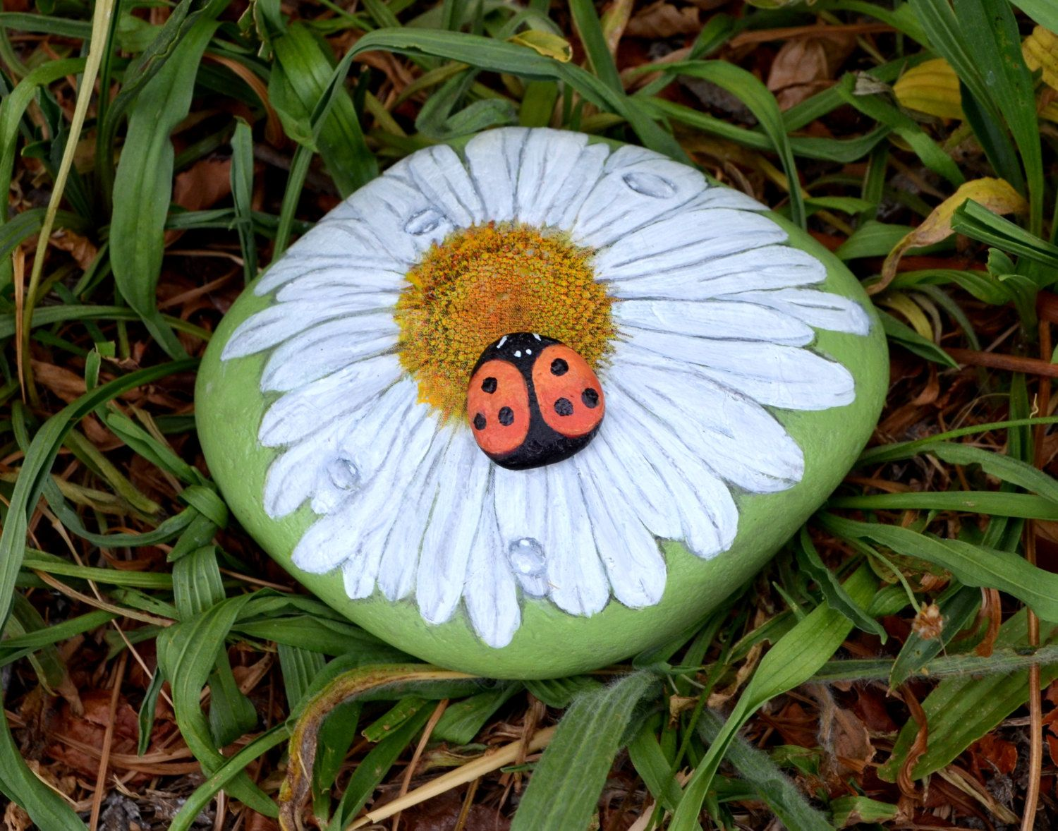 Flower Stone Painting, Garden Rock, Daisy, Flower Art, ,Painted Lady Bug