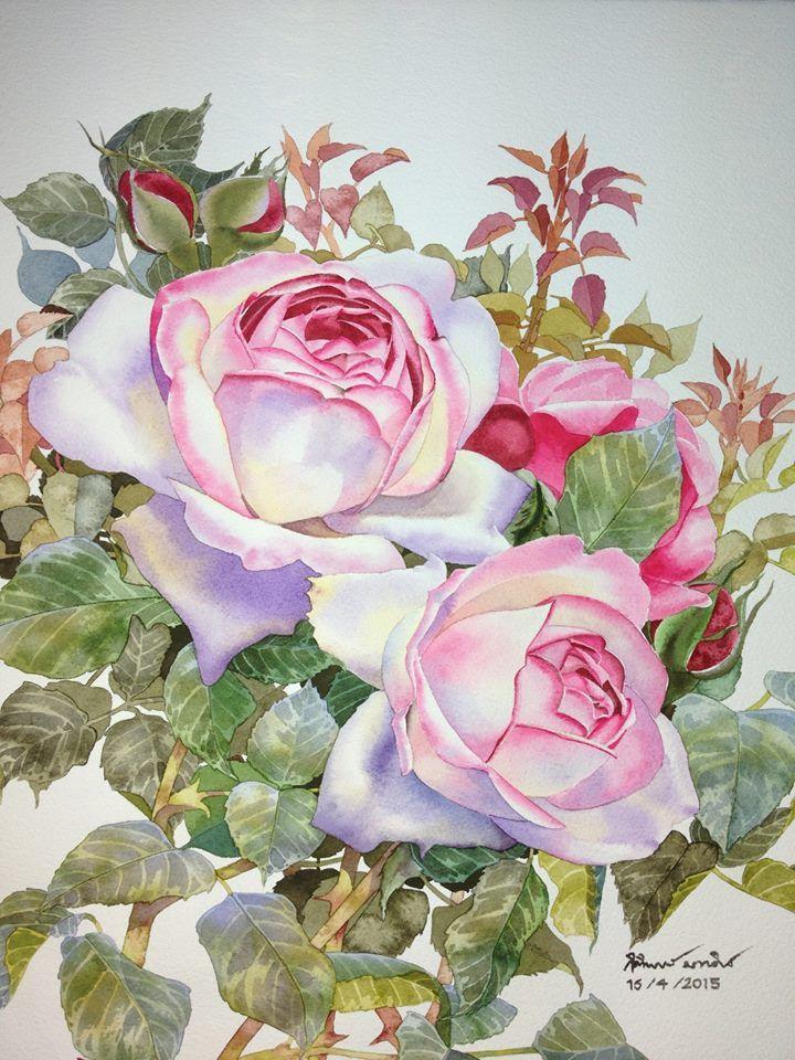 Sweet Roses Painting By Ti Watercolor ดอกไม ส น ำ ศ ลปะส น ำ ดอกไม