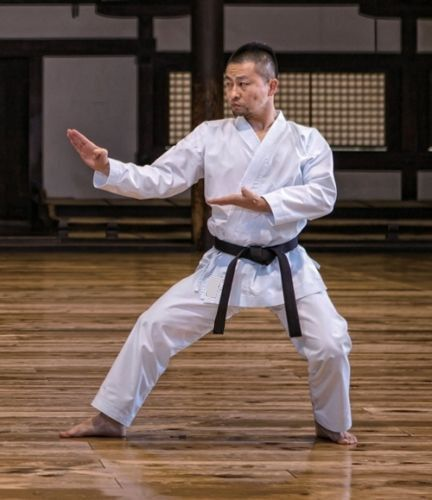 Cheap uniform boa, Buy Quality karate goods directly from