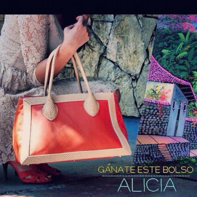 Win this Handbag Alicia! For more information like our page! - www.facebook.com/danilospurapiel