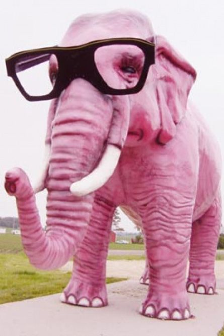pink elephant with glasses.. love it! | pink | Pinterest | Pink ...