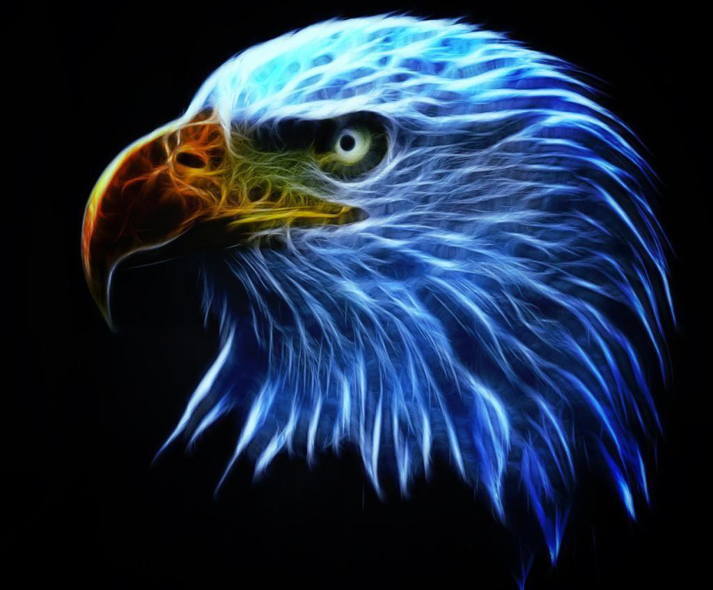 ауди это картинки на аву орел нашей