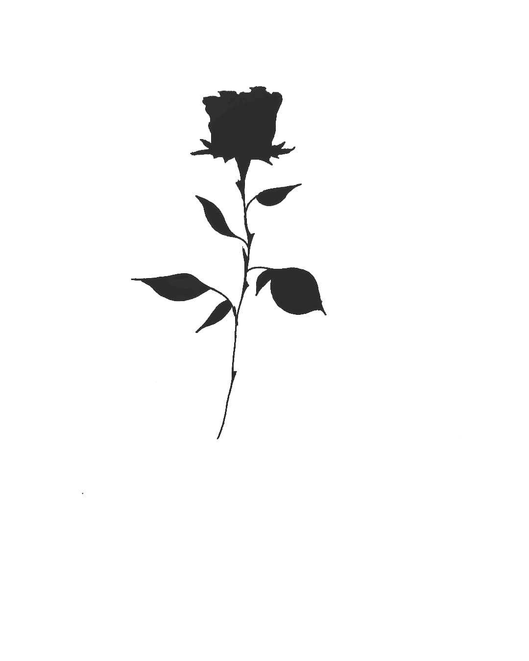 Rosa Negra Ya Reservada Ink Inked Tattoo Tatuagens De Rosas Negras Tatuagem De Coruja Pequena Tatuagens Aleatorias