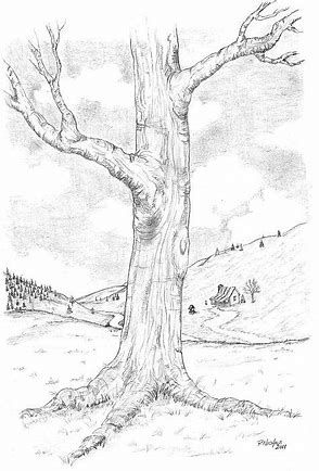 how to draw a tree with charcoal