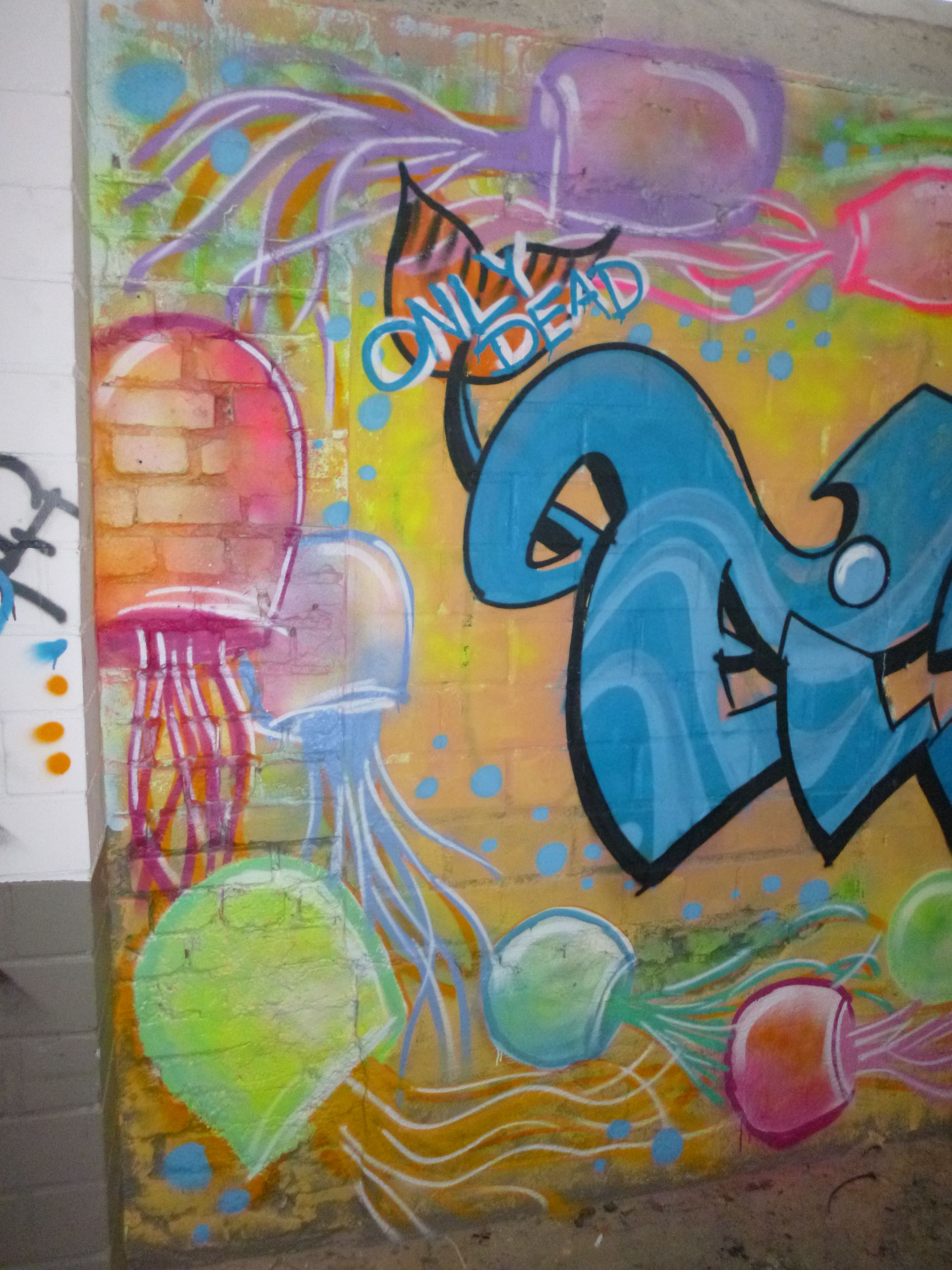Caroline Cirotzkis Quallen Graffiti
