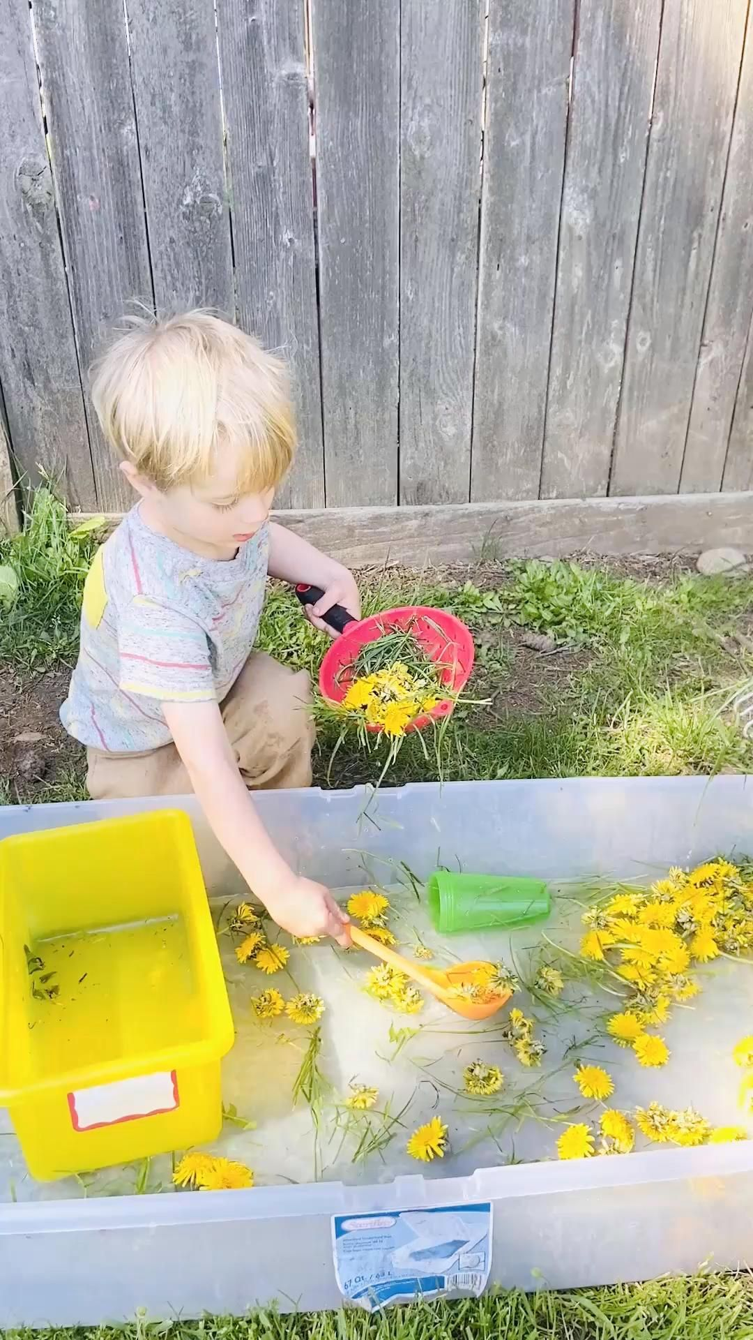 Dandelion Sensory Play For Toddlers and Preschoolers