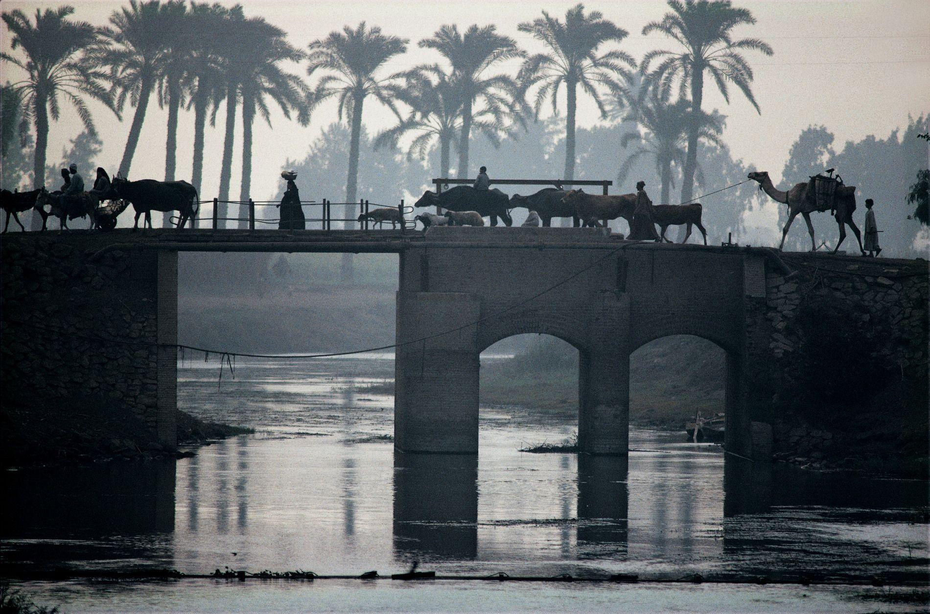 野町和嘉『写真』: The Nile
