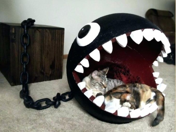 wunderbare einzigartige Katze Bett #gamerroom