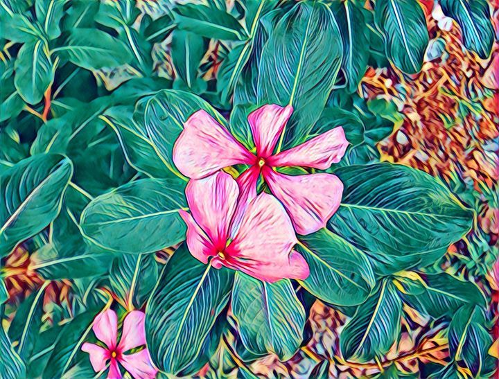 Pink Flower - FGHFGFJ - Paintings & Prints Flowers Plants & Trees Flowers Other… | ArtPal thumbnail