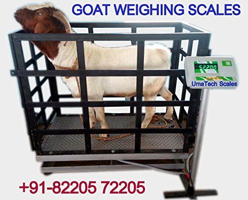 Pin by UmaTECH Weighing Scales Company Tamil Nadu on