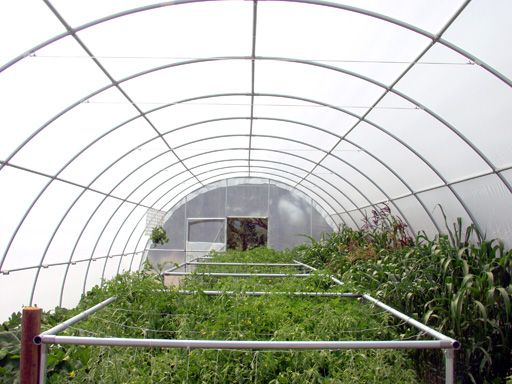 how to build your own greenhouse or hoophouse for less than 12 the cost - Diy Pvc Greenhouse Plans