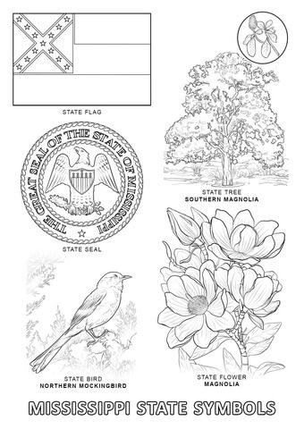 Mississippi State Symbols Coloring Page Free Printable Coloring Pages Flag Coloring Pages State Symbols Flower Coloring Pages