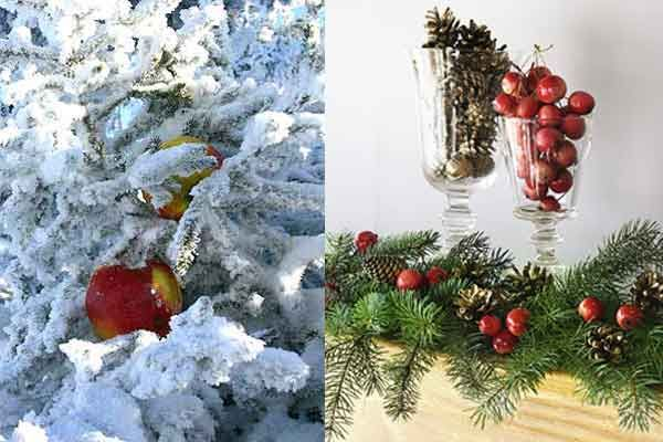 christmas decorations order your balsam or fraser fir wreaths clippings miniatures trees on line with hilltop christmas tree - Hilltop Christmas
