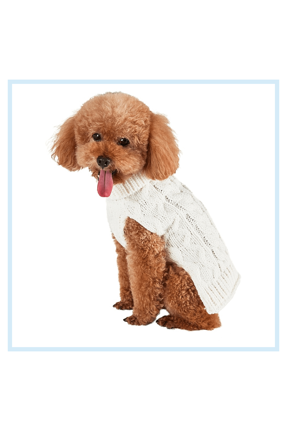 Bee & Willow Home Bee & Willow Home X-Large Cable Knit Dog Sweater In White