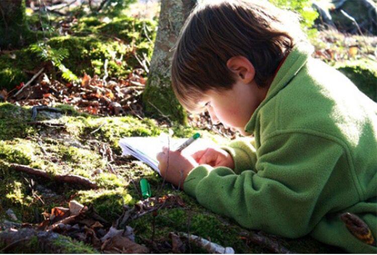 Un buen plan para disfrutar este fin de semana es explorar con tus niños la naturaleza. Conéctate abraza árboles y esconde tesoros. ¡Vuelve a lo natural! Una invitación de #Terra Visita nuestra página web www.terra.net.co y pregunta por nuestros servicios en el tel: (4) 3860181