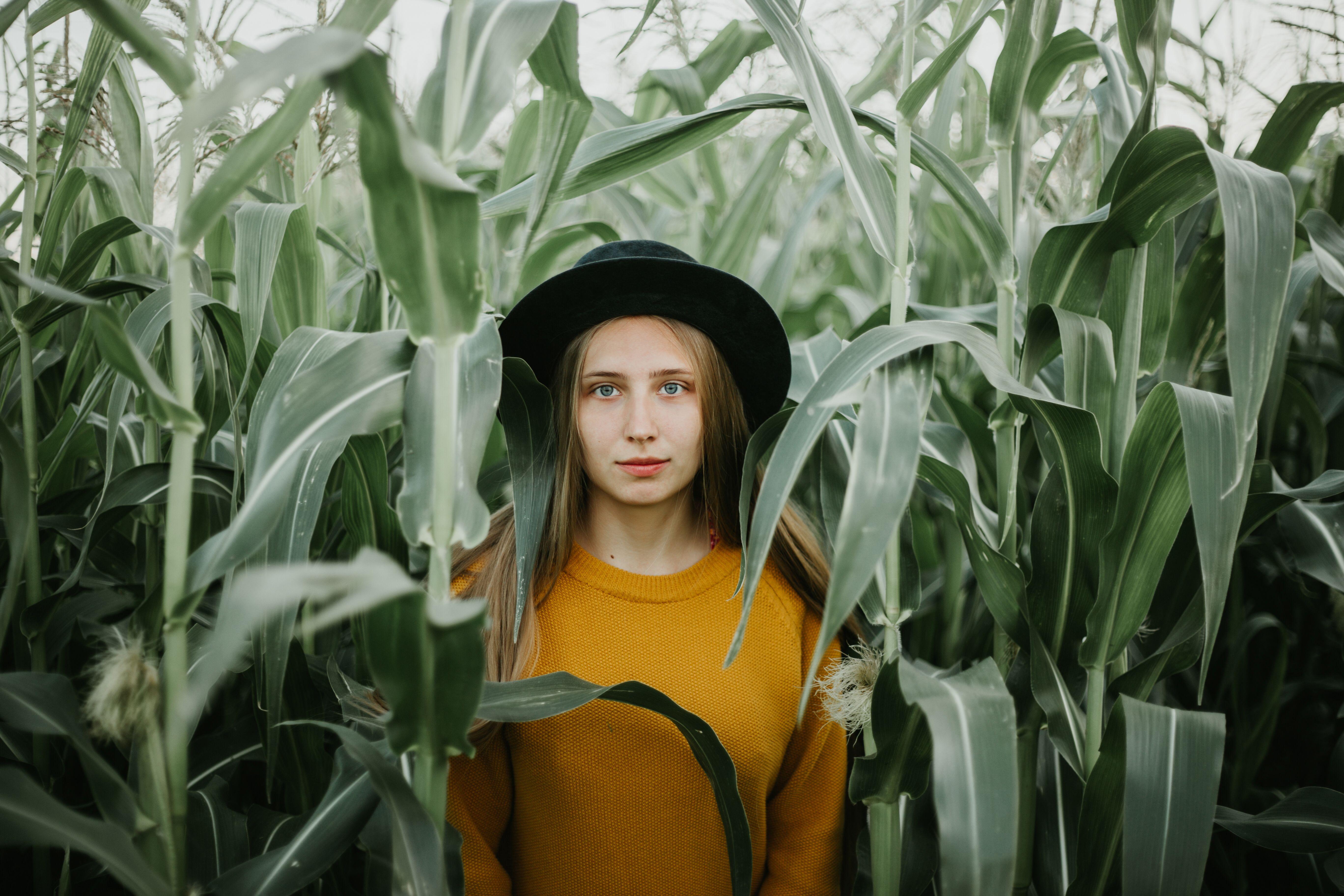 Фотосессия в кукурузе, идеи для фото, летняя фотосессия ...