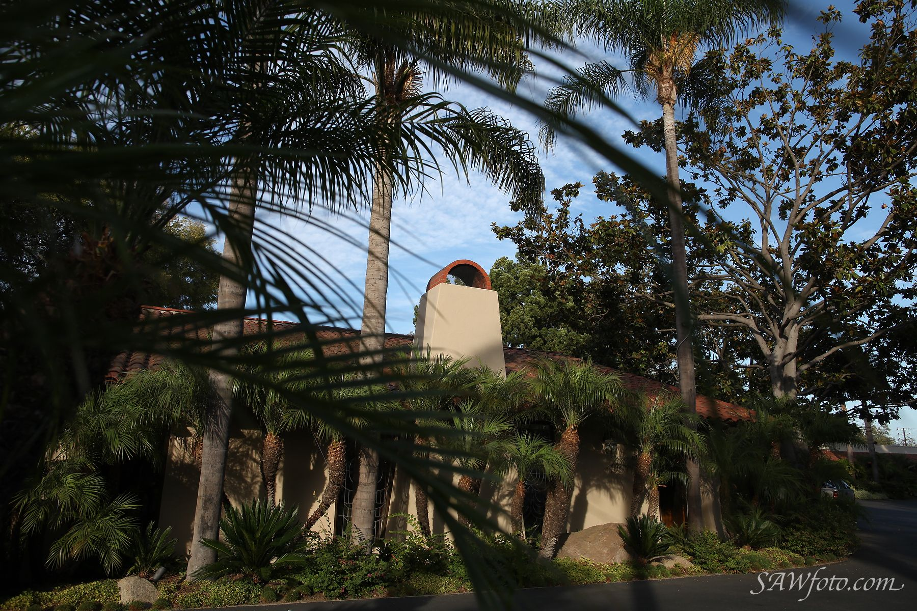 The palm tree lined drive lends a tropical feel to Mission Terrace.