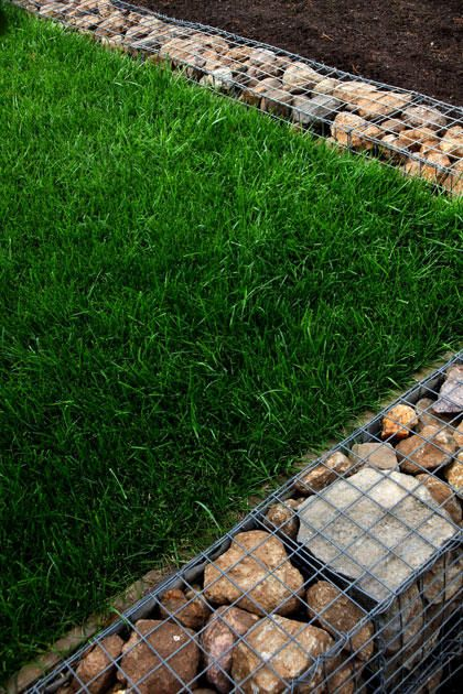 Gabion walls also appear in the garden, used to retain an elevated