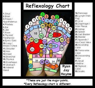 Pancreatitis Reflexology Reflexology Chart Reflexology Reflexology Foot Chart