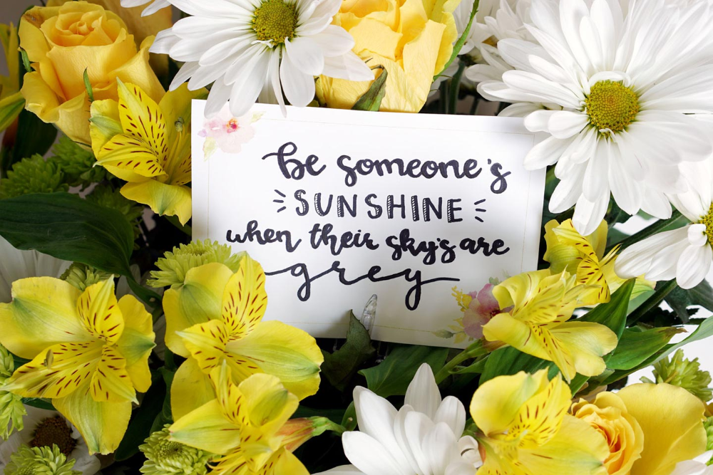 30 Inspiring Kindness Quotes That Will Enlighten You