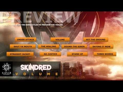 DAY ON A SCREEN: SKINDRED - VOLUME (preview)