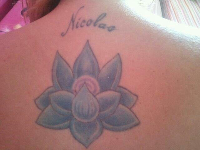 Minha linda flor de lotus