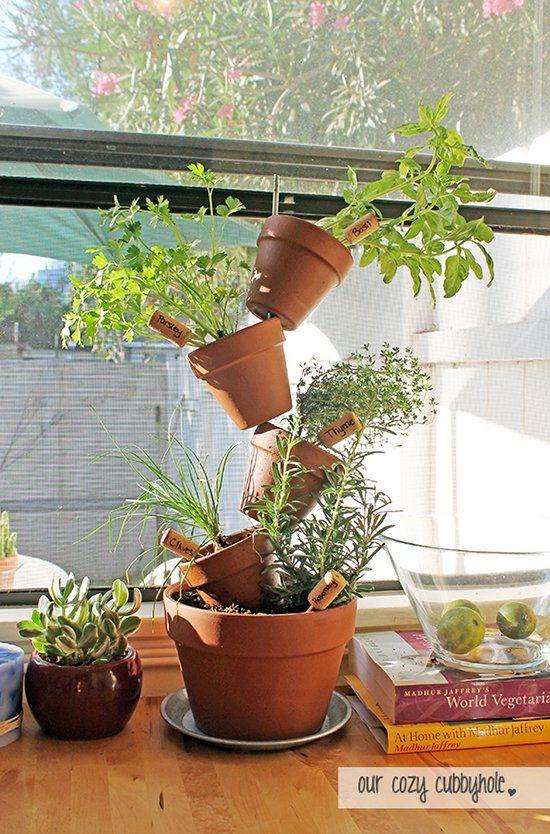22+ Originales y Creativos Mini Jardines para Interior Kitchen