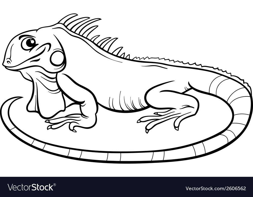 Black And White Cartoon Illustration Of Funny Iguana Lizard Reptile Animal Character For Coloring Boo Black And White Cartoon Funny Illustration Coloring Books