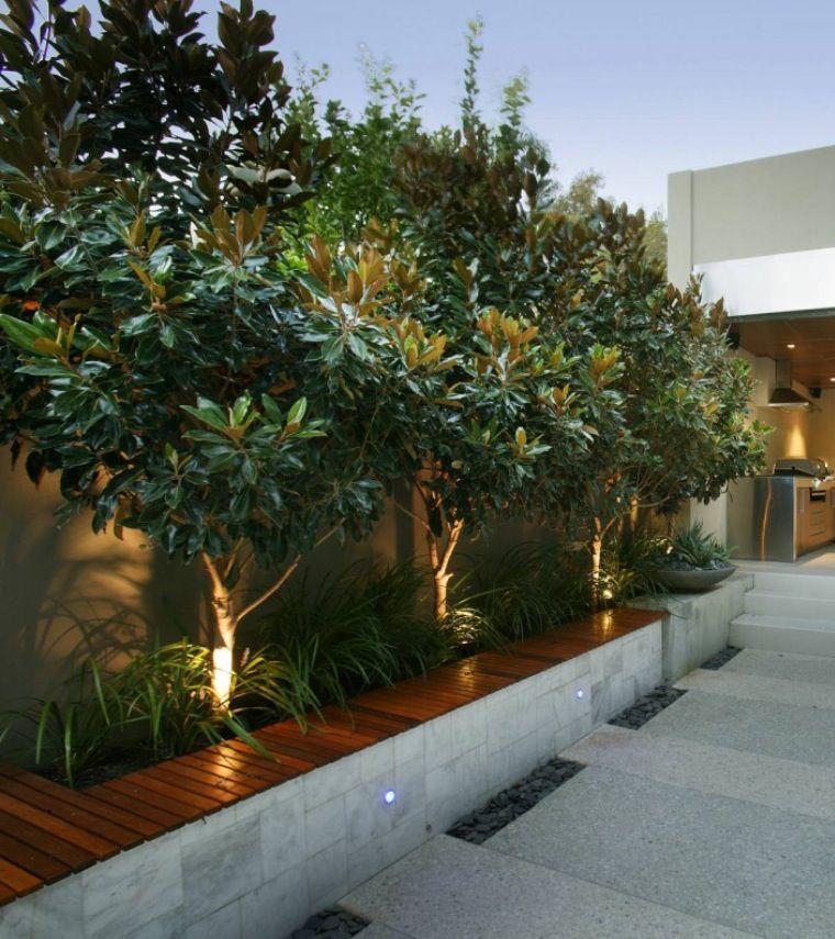 Planting ideas front yard perth backyard alfresco for Yard planter ideas