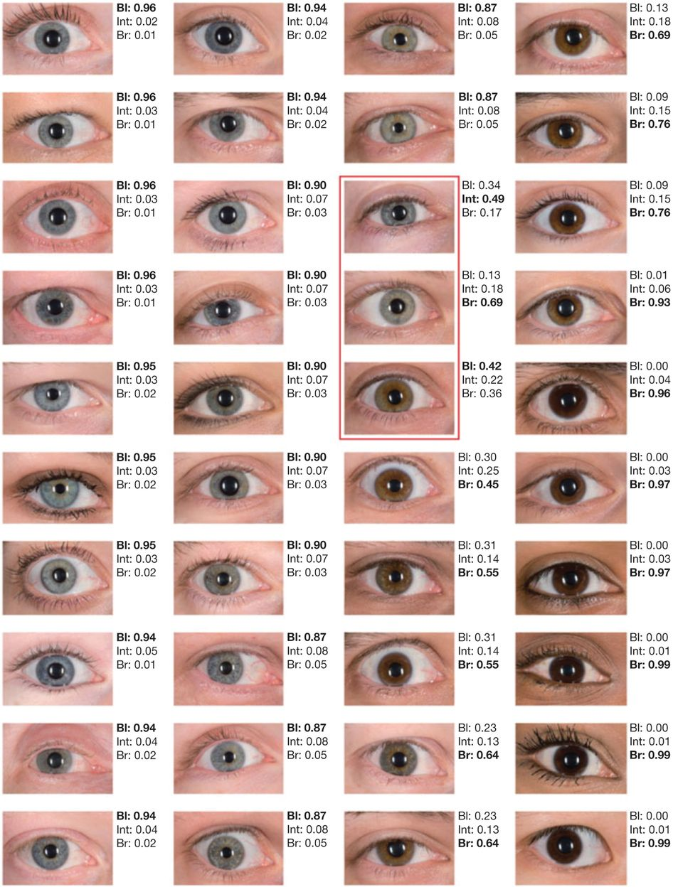 Forty Shades Of Color Dna Goes To Court Nature Biotechnology Eye Color Facts Eye Color Chart Blue Eye Color