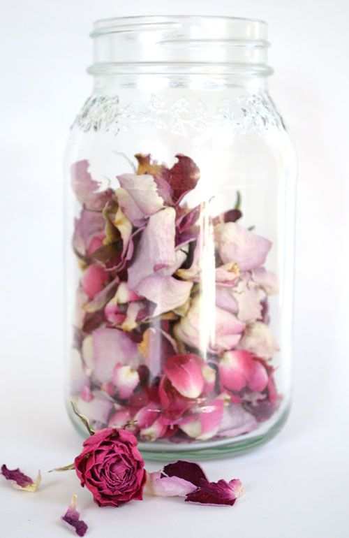 Do Something Beautiful With Dead Roses Dried Flowers Drying