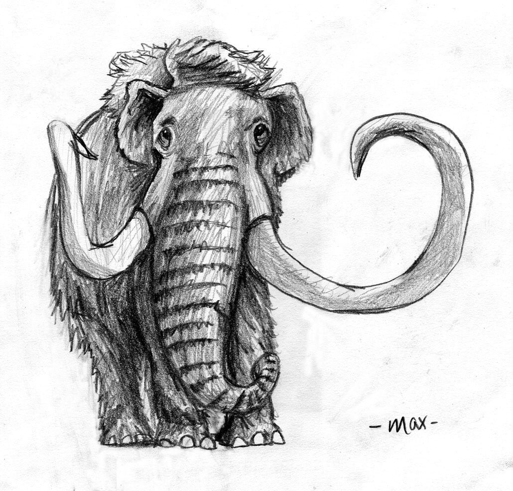 Woolly mammoth illustration illustration pinterest for The mammoth book of tattoos
