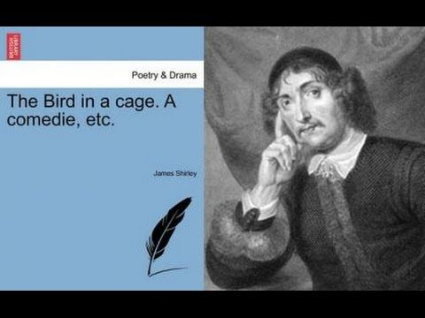 Renaissance Plays 18: The Bird in a Cage : Plot Summary