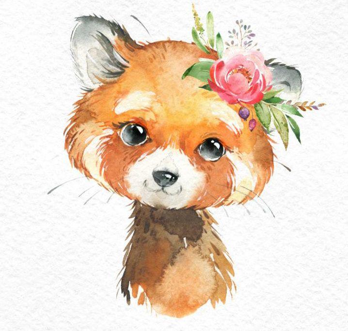 Pequeño Koala Panda Rojo. Acuarela animales clipart, retrato, flores, niño, lindo, arte de la guardería, naturaleza, realista, amigos, baby-shower
