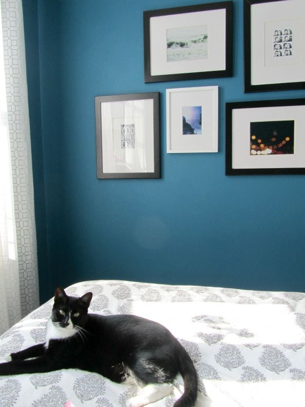 Benjamin Moore Deep Ocean This Would Be Pretty On The Back Inside Of A White Bookcase