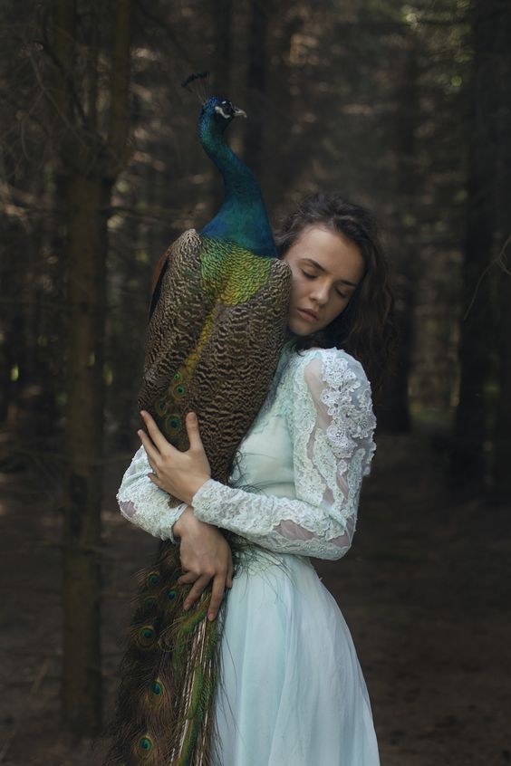 Katerina plotnikova photography animals
